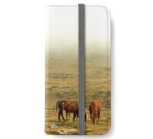 Horses in the mist iPhone Wallet/Case/Skin