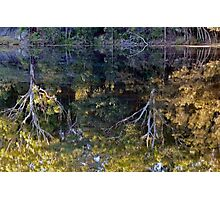 Mirrored Photographic Print