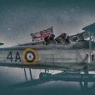 Fairey Swordfish Mk1 Salute by Nigel Bangert