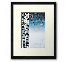 Birches in the mist Framed Print