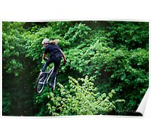 Whips in the canopy Poster