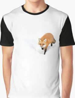 Red Fox - Algonquin Park Graphic T-Shirt