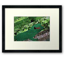 Happy Lizard Framed Print