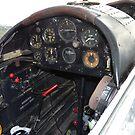 Chimpmunk - Rear Cockpit by stevealder