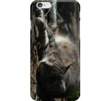 Resting cat iPhone Case/Skin