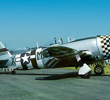 "P-47D Thunderbolt 45-49192 G-THUN ""No Guts no Glory"" by Colin Smedley"
