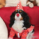 Charlie Girl the Clown for the Party by AnnDixon