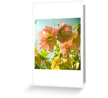 Freckles Greeting Card