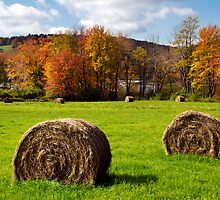 Hay Bales and Fall Color Landscape by Christina Rollo