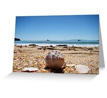 Waiheke Island Seashells Greeting Card