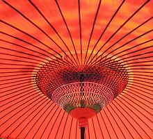 Japanese Parasol by davidandmandy