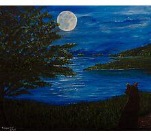 Blue Moonlit Bay Photographic Print