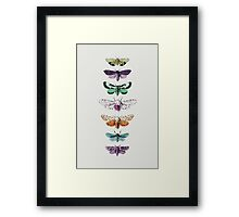 Techno Moth Collection Framed Print