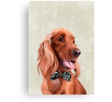 Mr. English Cocker Spaniel portrait Canvas Print