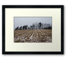Snowy Winter Cornfields Framed Print