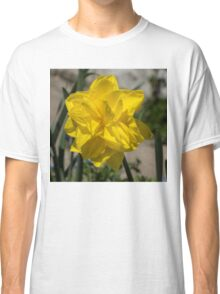 Sunny Yellow Spring - a Golden Double Daffodil Classic T-Shirt