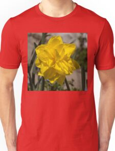 Sunny Yellow Spring - a Golden Double Daffodil Unisex T-Shirt