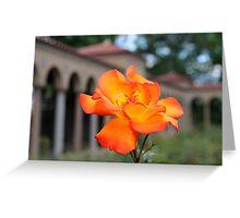 Franciscan Monastery rose garden, DC Greeting Card