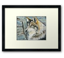 The Grey (but Colorful) Wolf Framed Print