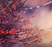 Fruitful Branching by Caroline Roberti