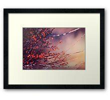 Fruitful Branching Framed Print