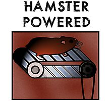 Hamster powered Photographic Print