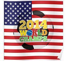2014 World Champs Ball - USA Poster