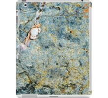 Bras d'Or Baby Crab iPad Case/Skin