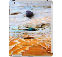 Bras d'Or Stones on Driftwood iPad Case/Skin