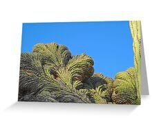 Fantastic Saguaro Crest Greeting Card