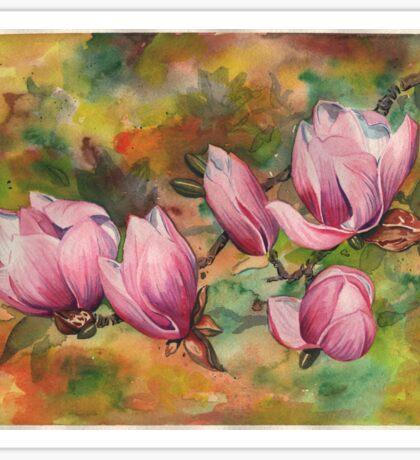 Magnolia Blossoms (in Watercolor) Sticker