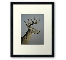 Portrait of a Deer Framed Print