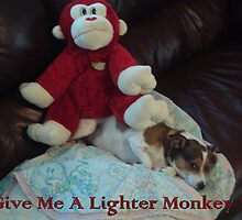 Lighter Monkey by Brian Blaine
