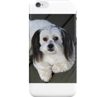 Olive the good dog iPhone Case/Skin
