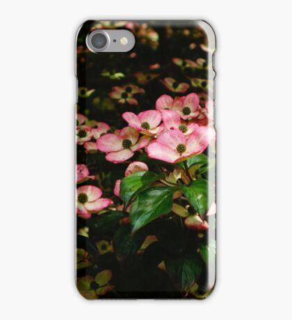Cornus iPhone Case/Skin