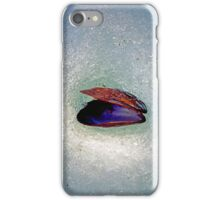 Snow Shell iPhone Case/Skin