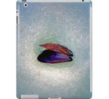 Snow Shell iPad Case/Skin