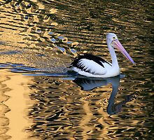 Pelican in Gold by Ann  Van Breemen