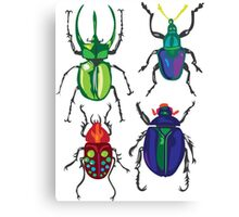 Beetles Canvas Print