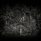 Gone and Forgotten by pixelfan
