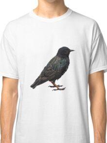 Stunning starling Classic T-Shirt