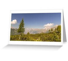 mountain peak in a summer day Greeting Card