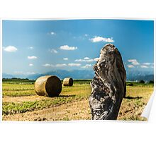 hay bale in the fields Poster