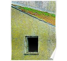 The Mossy Roof Poster