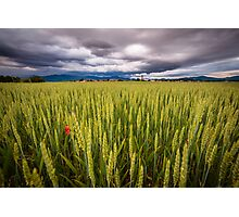 storm over the fields Photographic Print