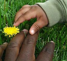 Dandelion picking by distinctmoments