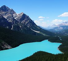 Incredible Peyto Lake by davidandmandy