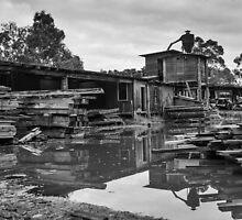 Millgrove Saw Mill by Colin  Ewington