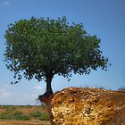 hovering tree by jhawa