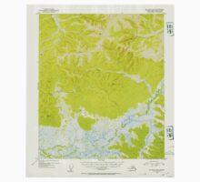 USGS TOPO Map Alaska AK Big Delta B-4 354545 1953 63360 Kids Tee